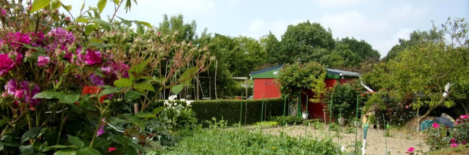Albums Photos des jardins familiaux